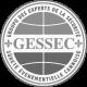 gessec (1)